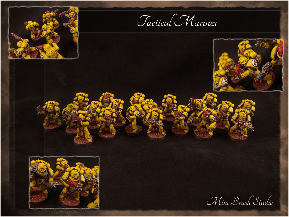Imperial Fists Tactical Squad 10 v7.jpg
