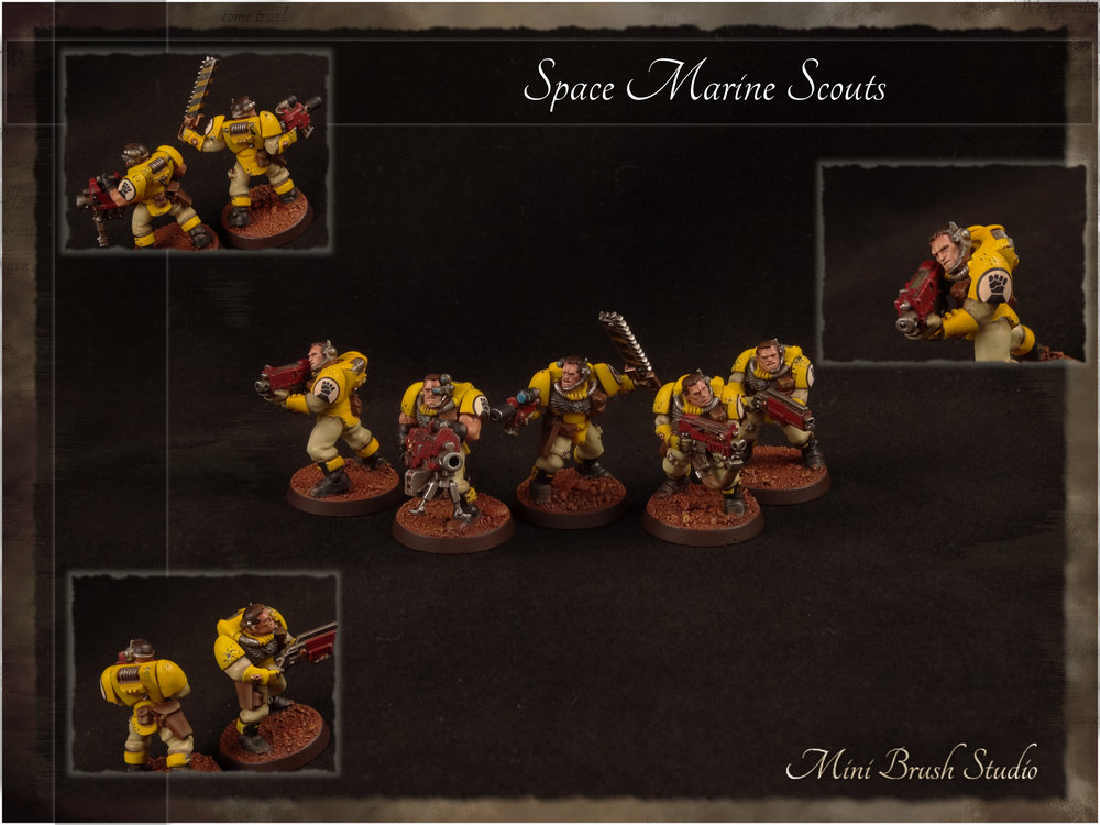 Space Marine Scouts 5 ( Imperial Fists ).jpg