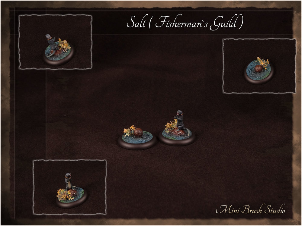 Salt ( Fishermans Guild ) 1 v7.jpg