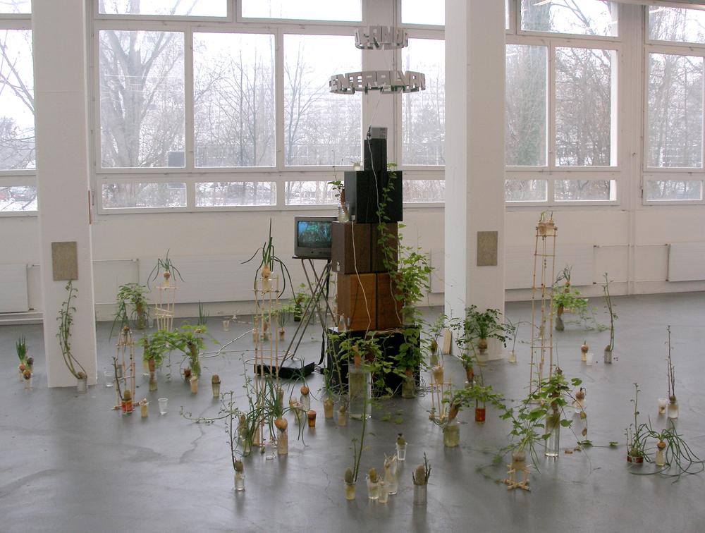 Colourfield (Reworked) / Regional 5 / Kunsthaus Baselland Switzerland2004