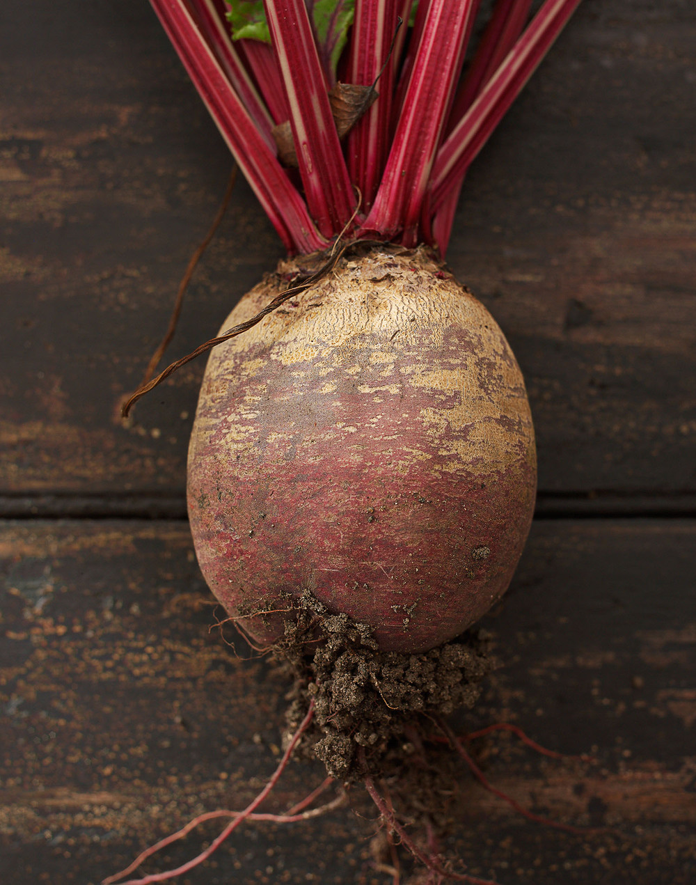Food Photography Photographer London UK Beetroot