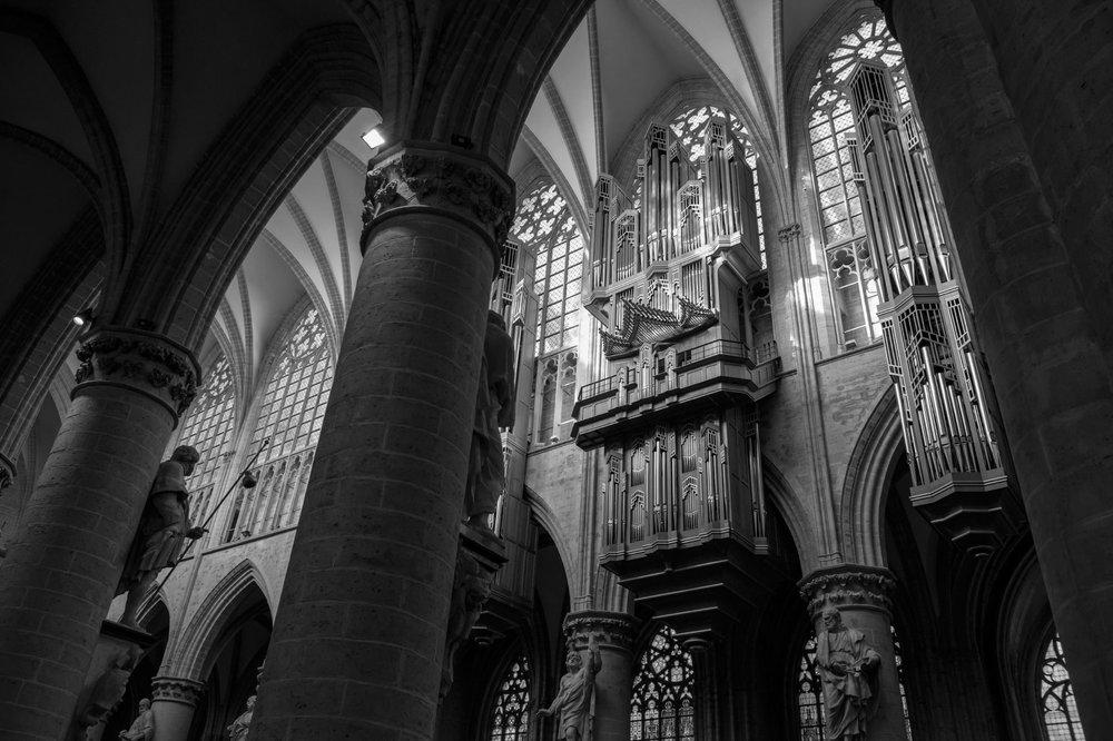 Module Brussel, stad van orgels -