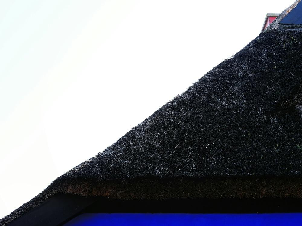 reeds diagonal - sony nex 7 | sel35 f1.8 | f4.0 | ISO100 | 1/160