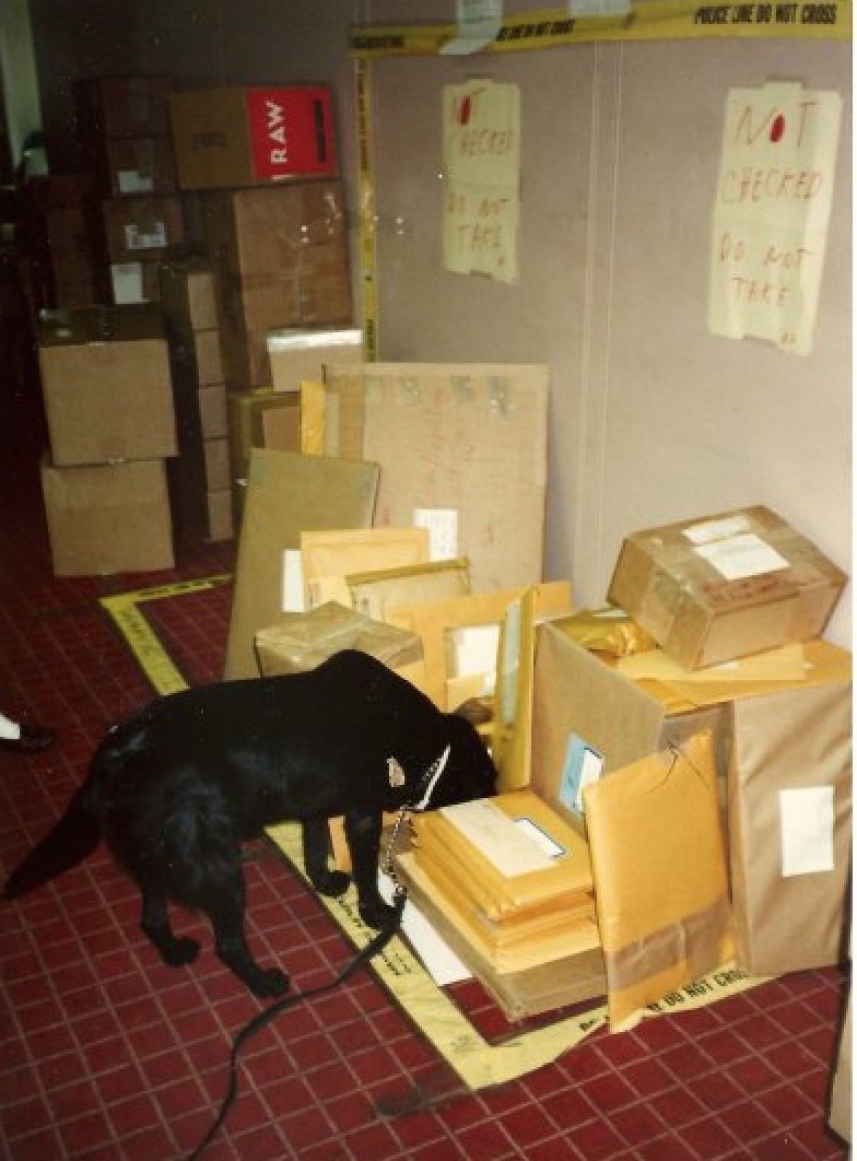 Back when The Satanic Verses was first published, Yalta the explosive-sniffing dog had to check all of Viking's mail, which also caused delays.