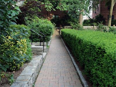 bxv_walkway.jpeg