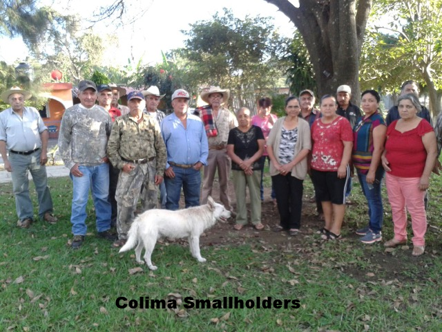 Colima Smallholders 2.png