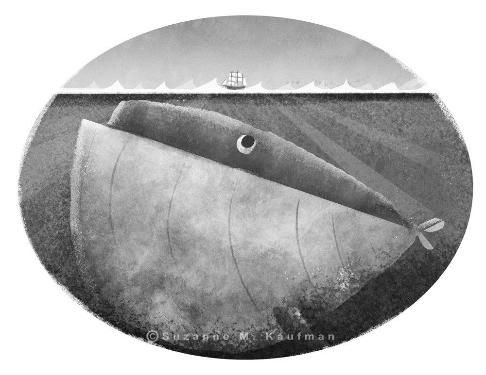 whale_copyright_suzannekaufman.jpg