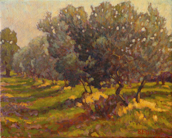 Vincnent's Grove