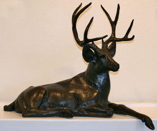 Reclining Deer II