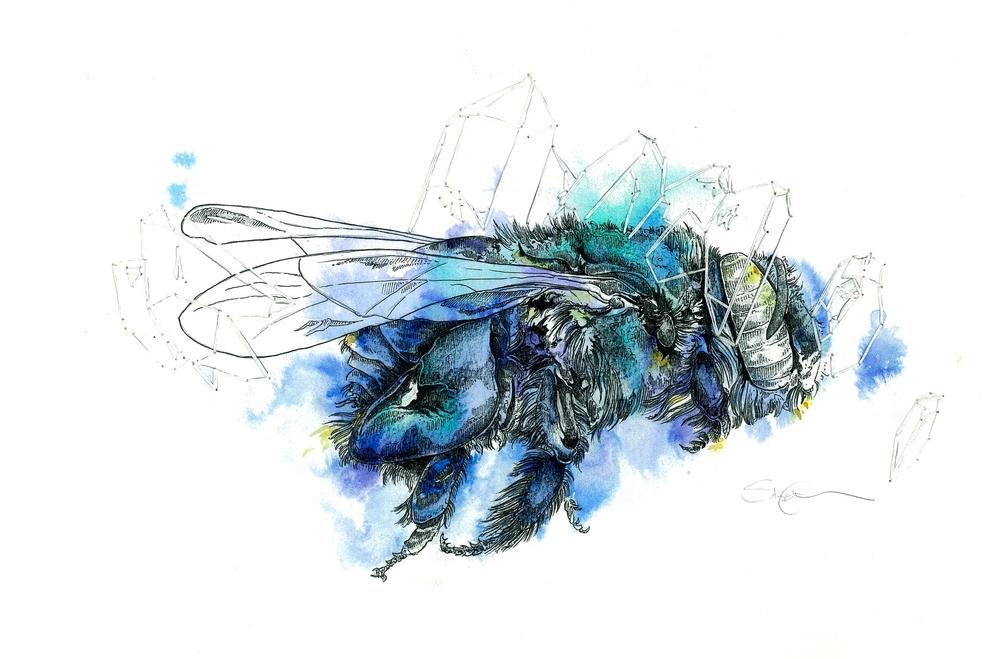 Sapphire Bee