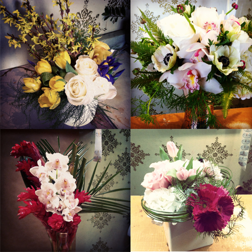 instagram collage 2.jpg