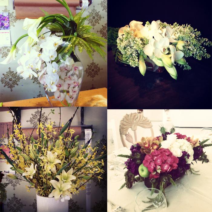 instagram collage 3.jpg