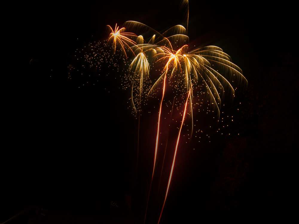 Firework-01.jpg