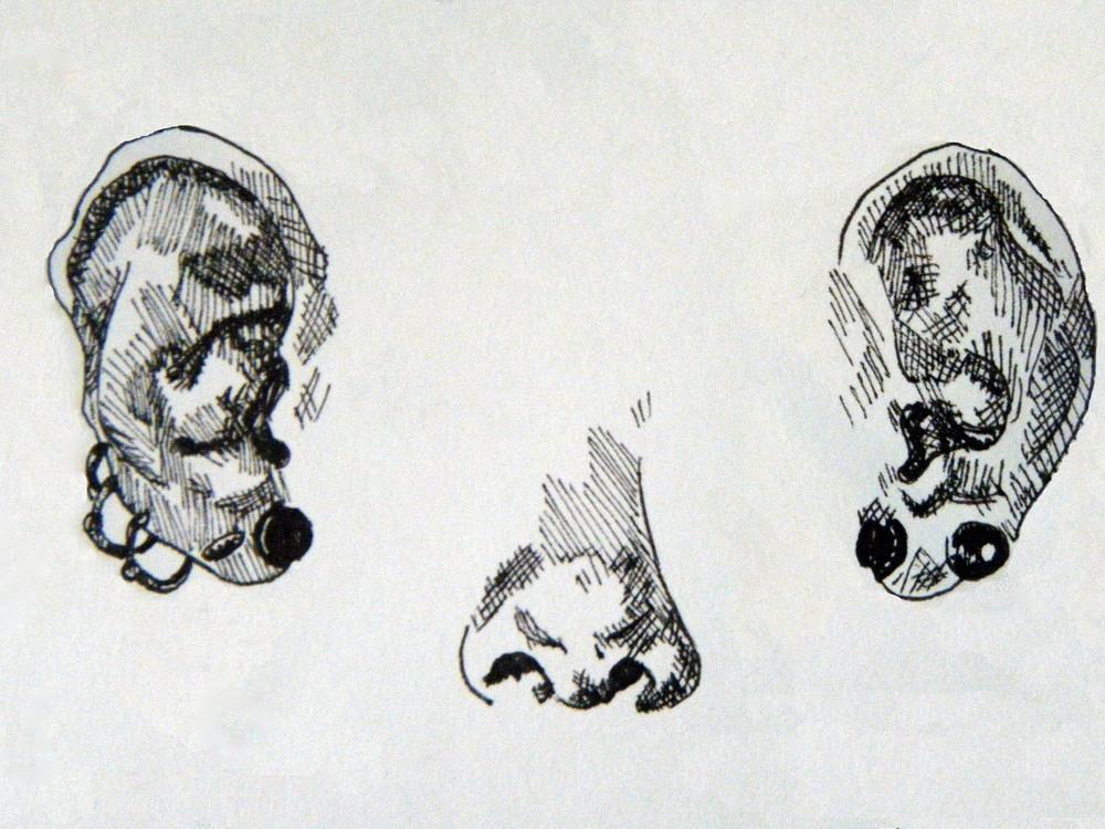 sketchbook stram of concious.jpg