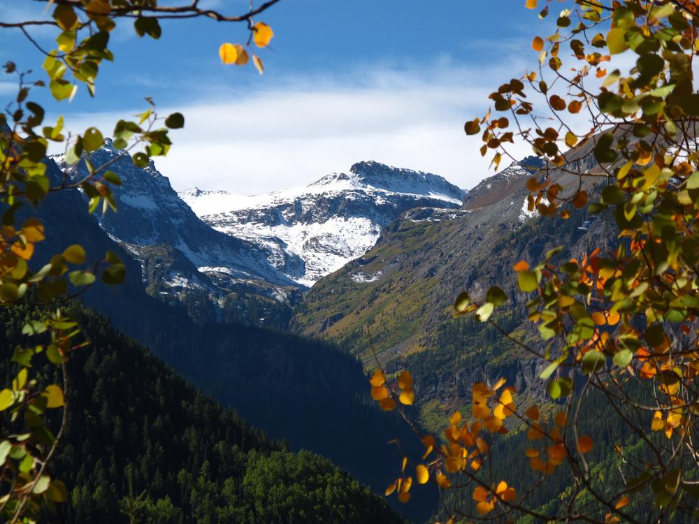 fall1.jpg
