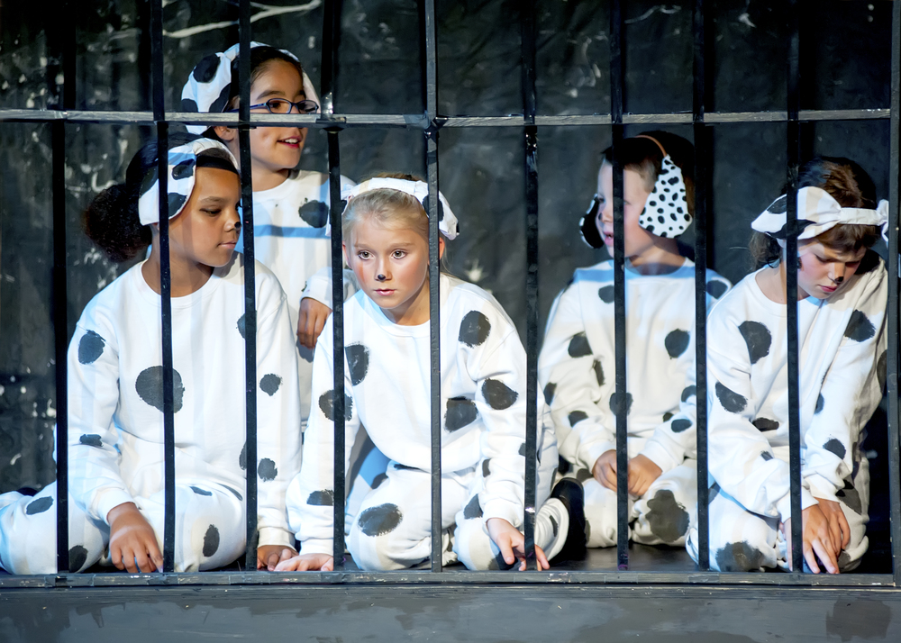 Summer Camp 2014 - 101 Dalmatians