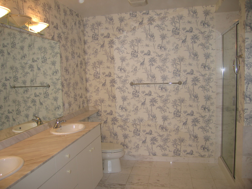 Lincoln Park Condo Bathroom (Before Staging)