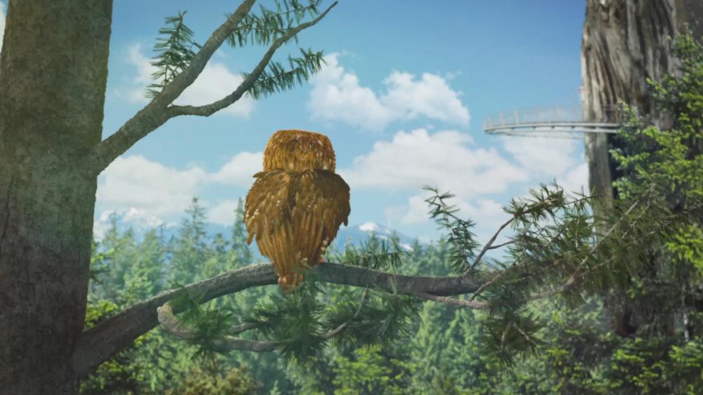 OWL_04.jpg