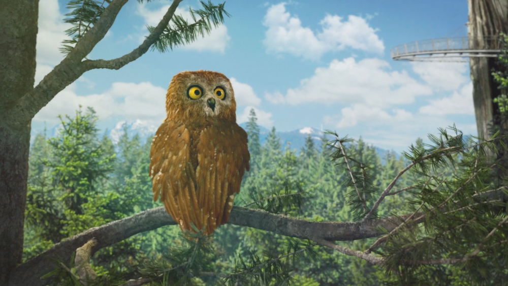 OWL_05.jpg