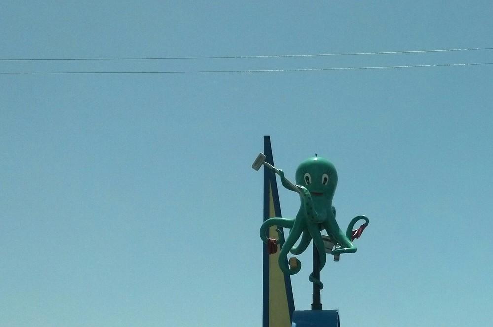 Octopus guy