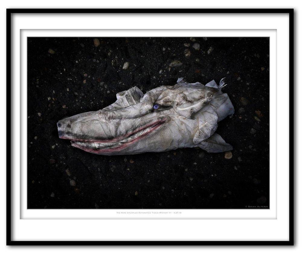 The Rare Crumpled Outerspace Tissue Mystery #1 - 4.27.16 - Framed.jpg