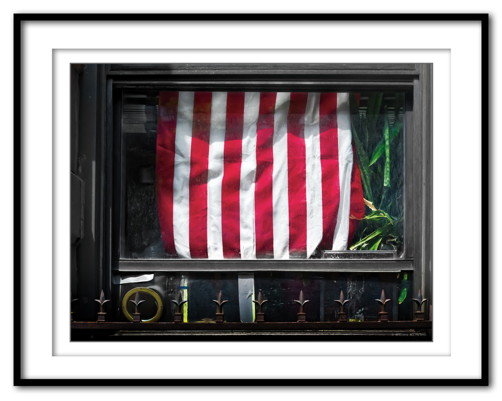 1-2 Flag - 7.13.16 - Framed.jpg
