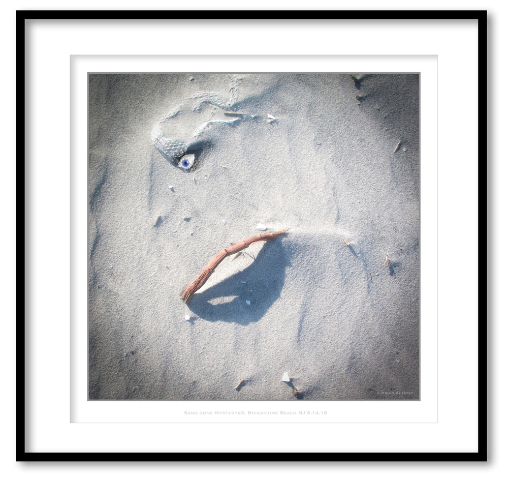 Sand Dune Mystery#2, Brigantine Beach NJ 8.14.16- Framed.jpg