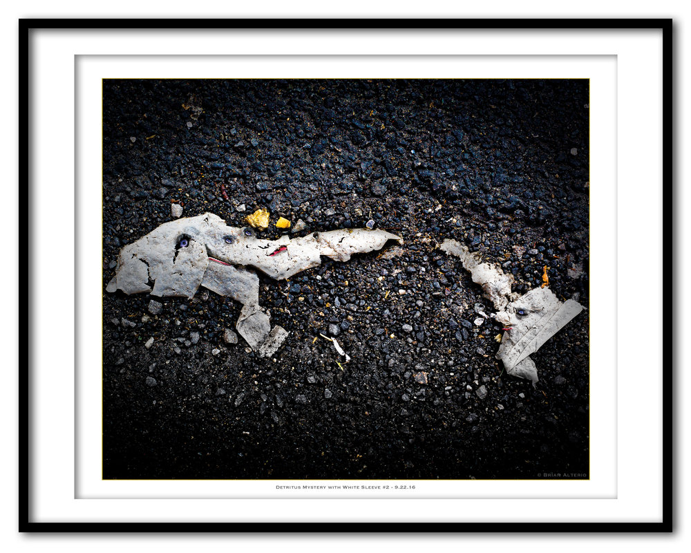 Detritus Mystery with White Sleeve #2 - 9.22.16 - Framed.jpg