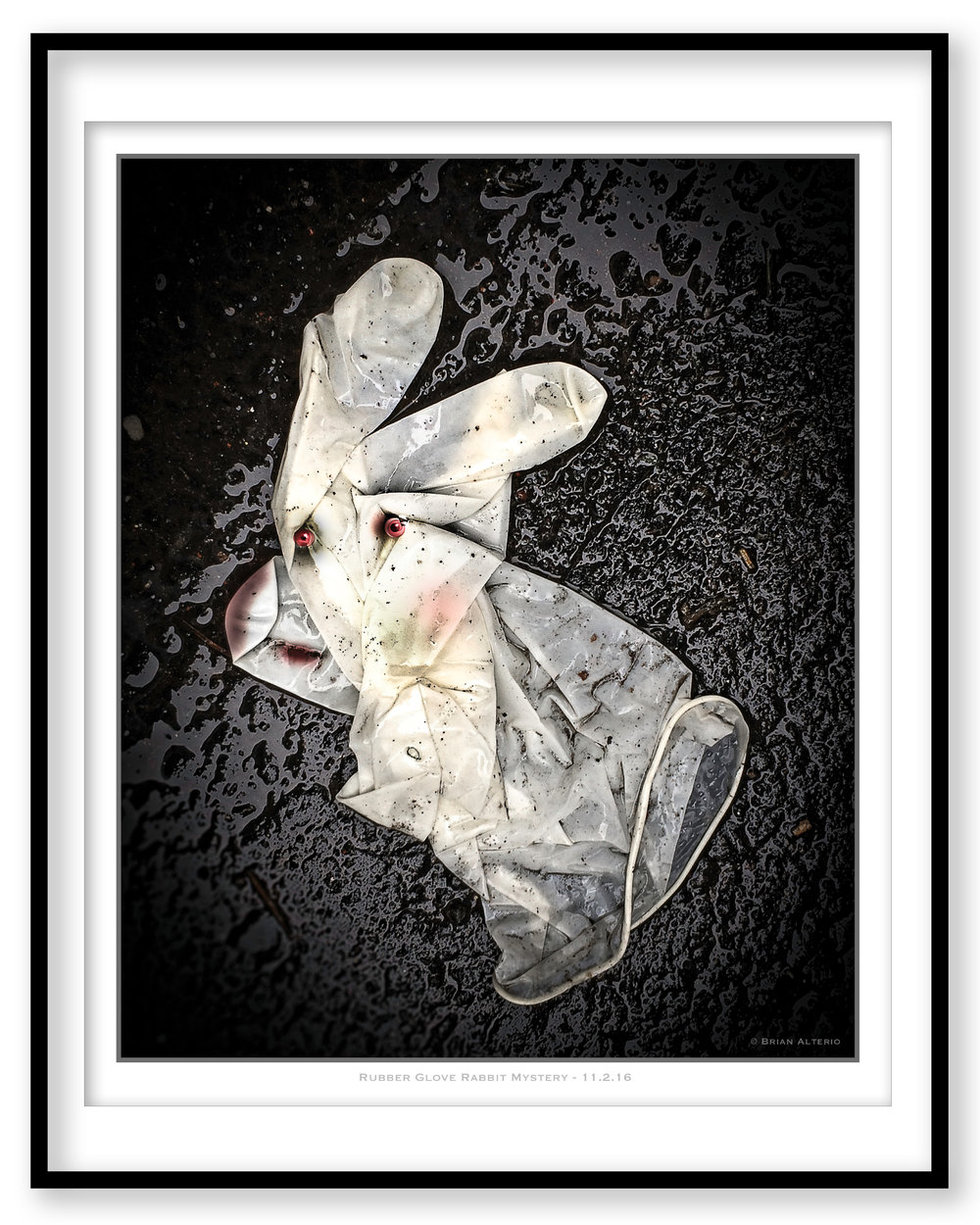 Rubber Glove Rabbit Mystery - 11.2.16 - Framed.jpg
