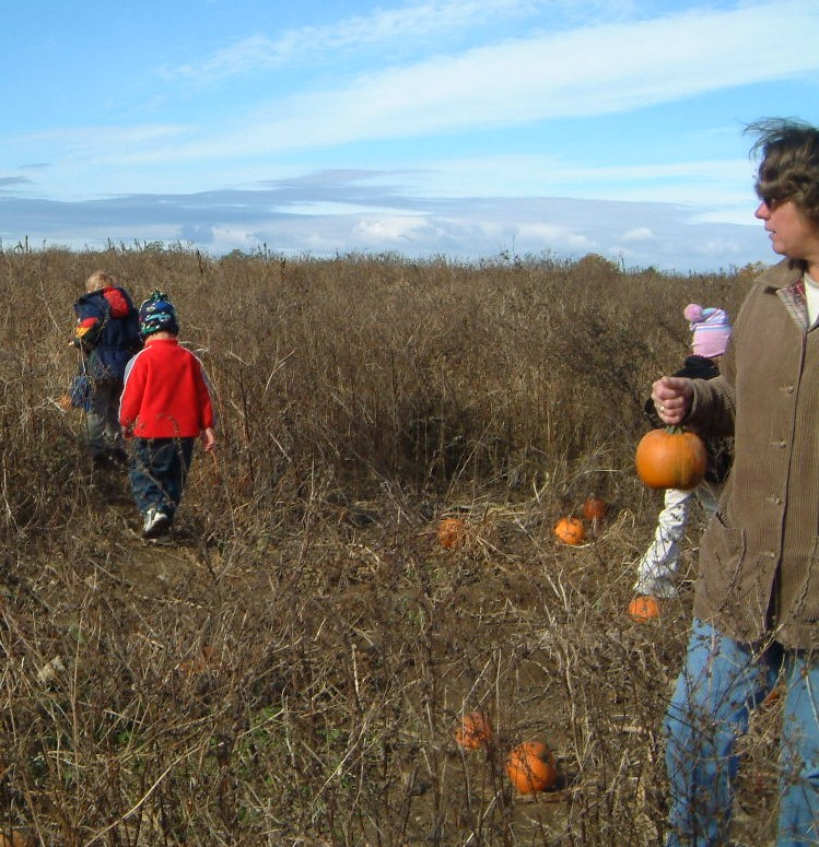 Annual pumpkin patch field trip