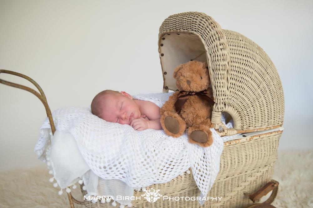 newborn session adelaide-5.jpg