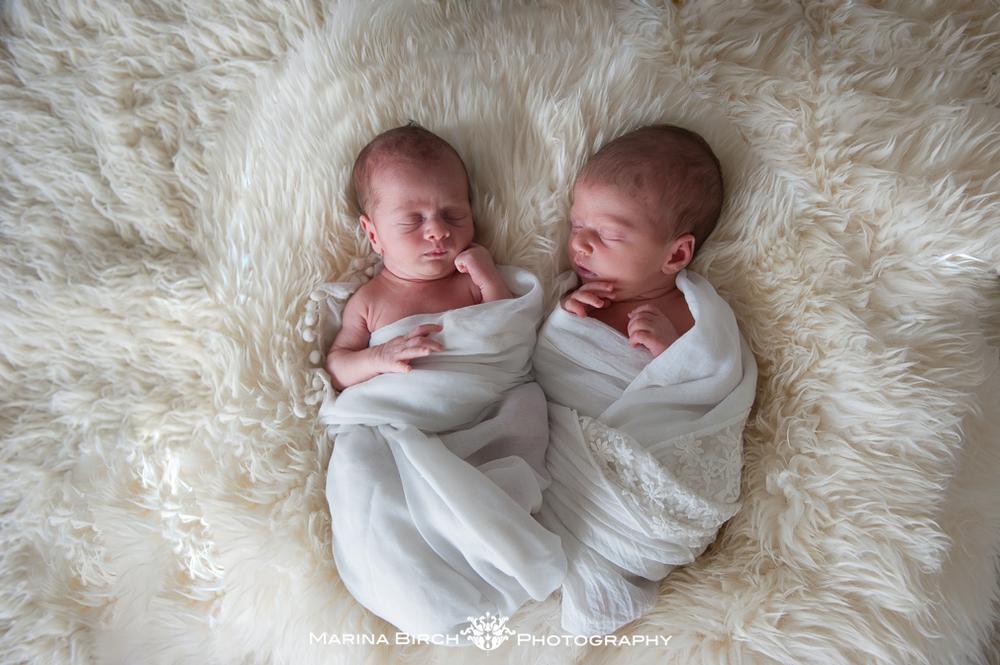 MBP. newborn polito-3.jpg
