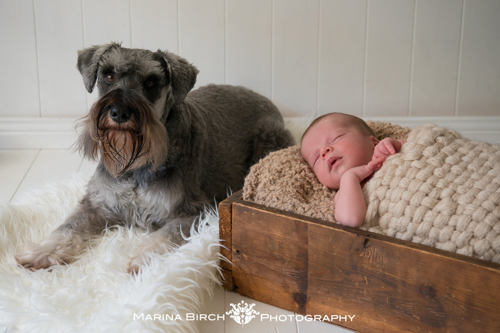 MBP.newborn Hamish-6.jpg