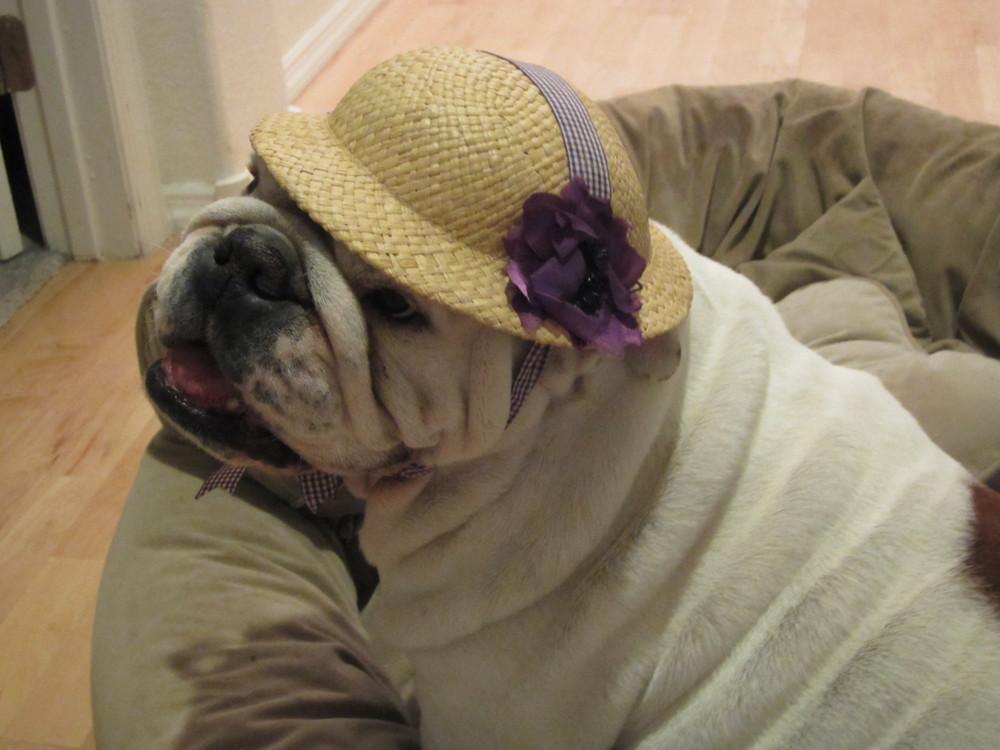 Juliet in her Easter hat