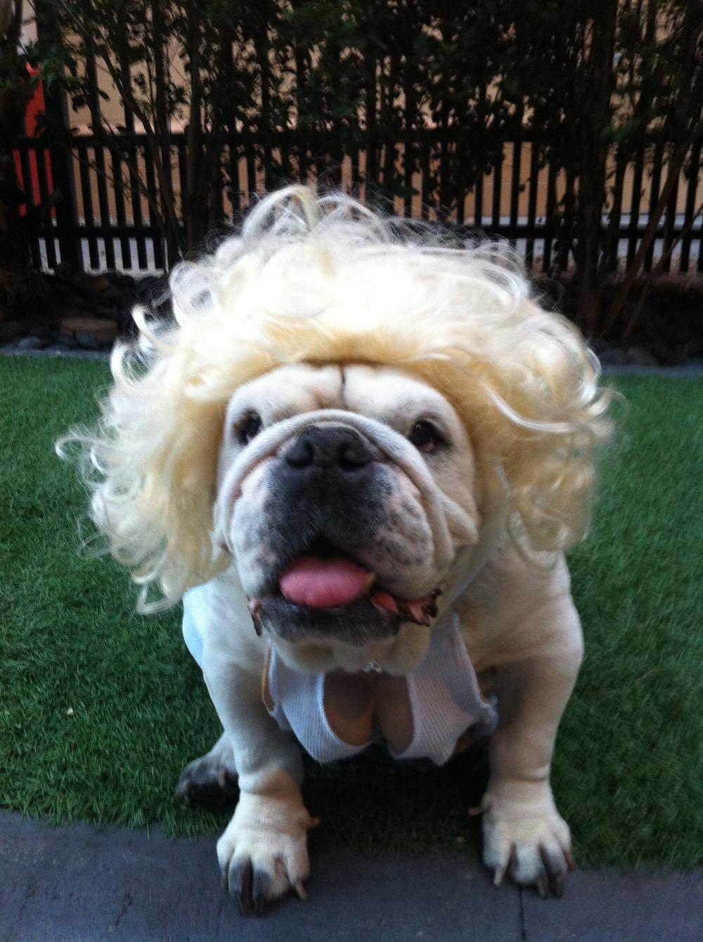 Juliet dressed as Marilyn Monroe