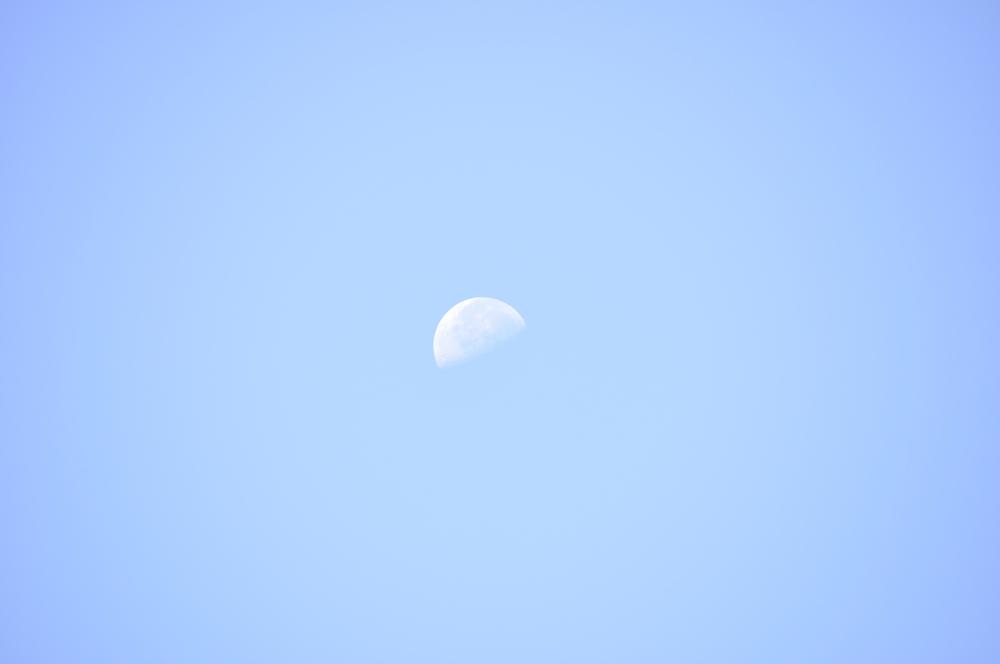Cercare la luna