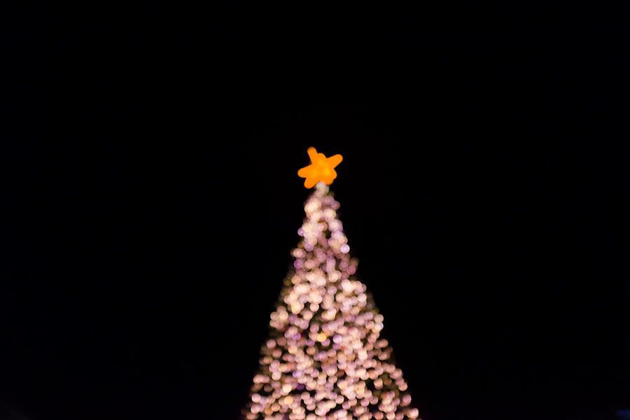 1329 christmas tree