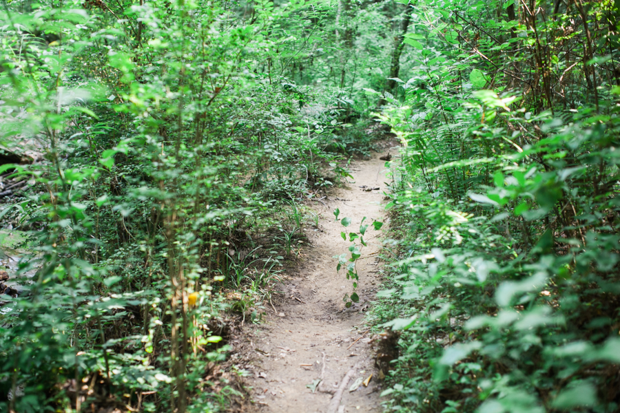 Birmingham Hiking Photography