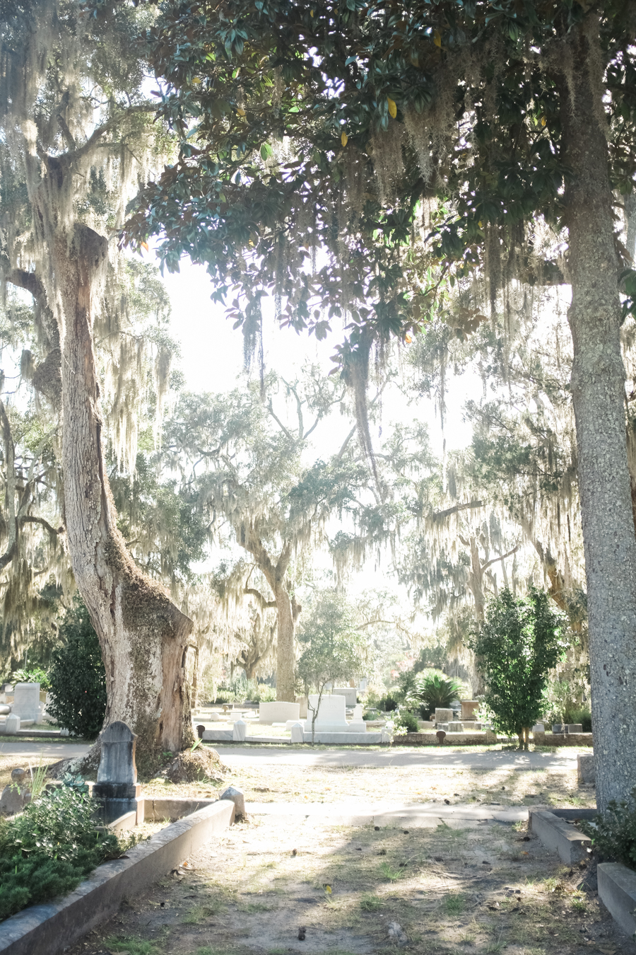 Bonaventure Cemetery Savannah Georgia Photography