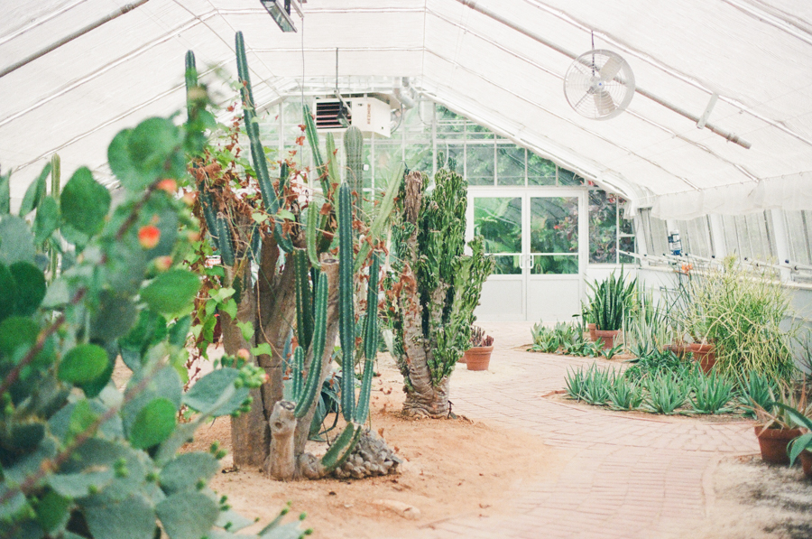 1486 Birmingham Botanical Gardens Film3.JPG