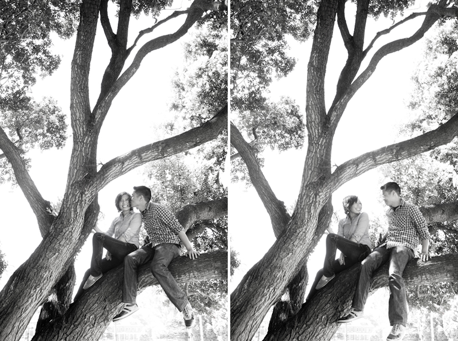 San Francisco Presidio Engagement Photography | Melia & Brian