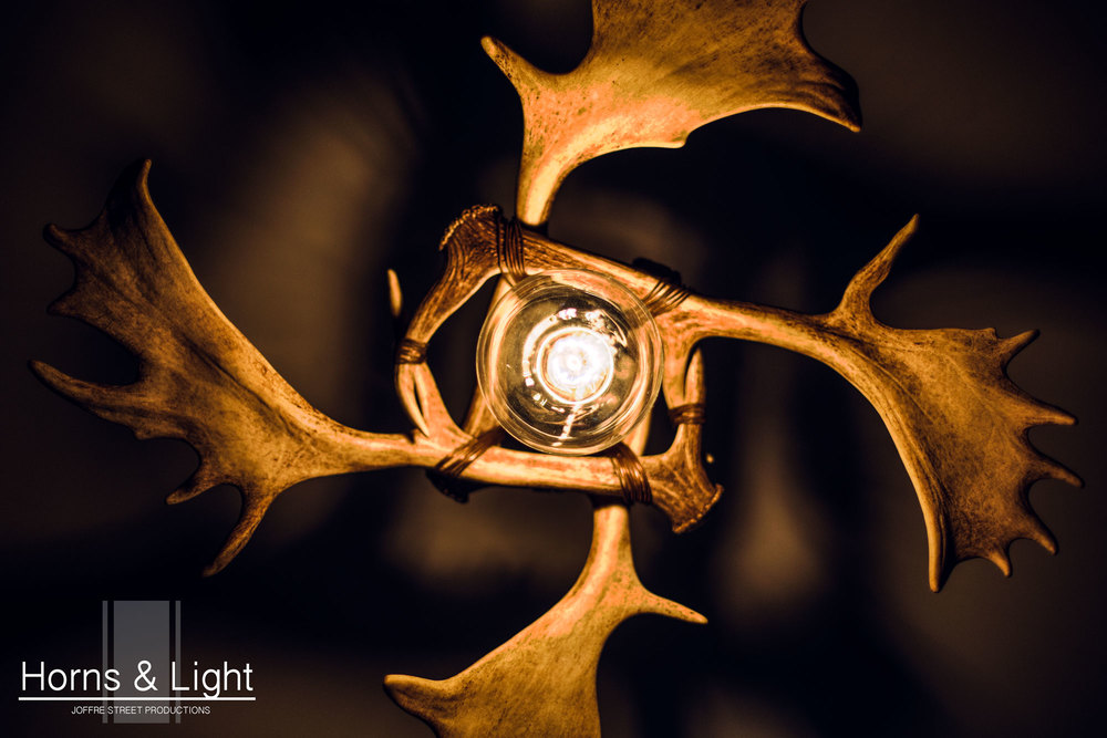 Horns & Light