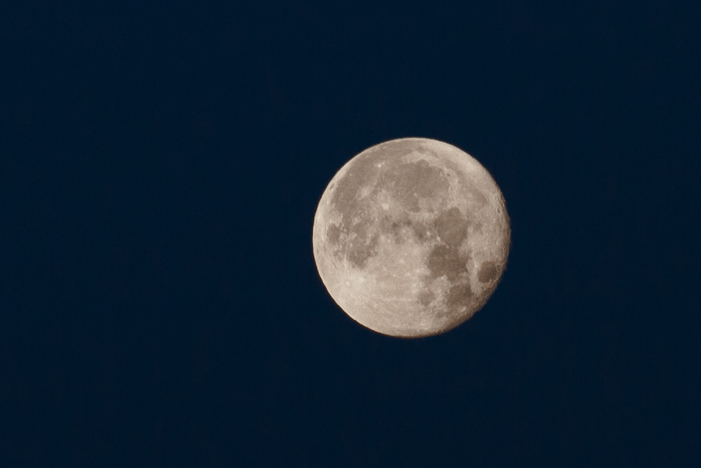 The sky was slate blue—but showing moon surface detail requires considerable underexposure. Photo taken on November 27, 2015, at 7:08 in the morning in Warsaw's Mokotów with a Canon EOS Digital Rebel XT fitted with the 200mm/f2.8 L-series lens. Copyright ©2015 Natalia Osiatynska.