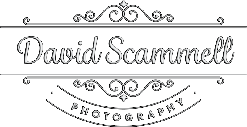 Wiltshire and Salisbury Wedding Photographer - David Scammell