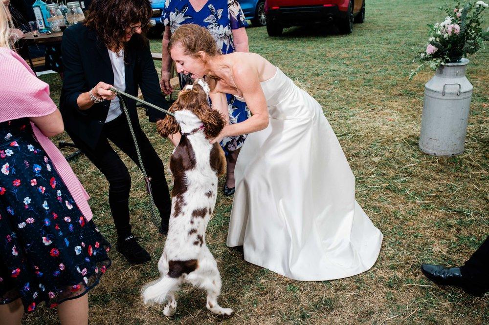Salisbury wedding photography (140 of 250).jpg