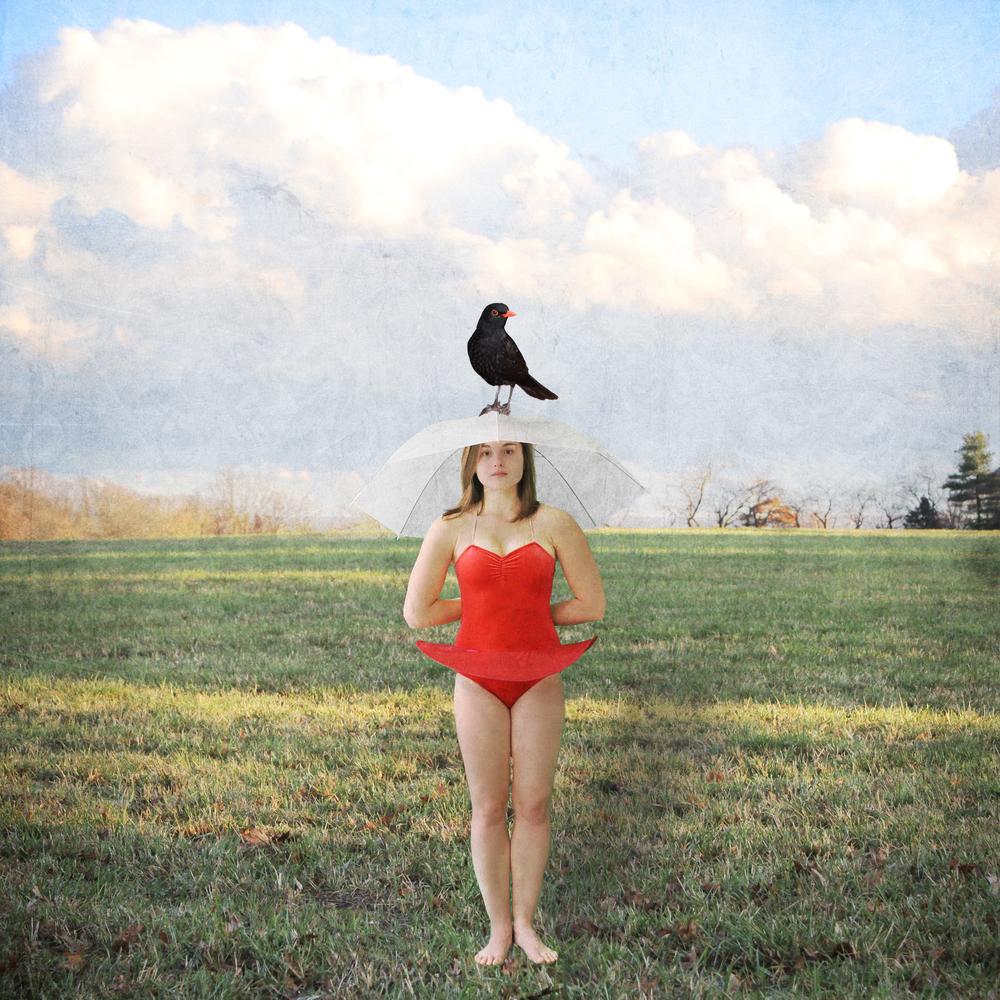 Anna Bird copy.jpg