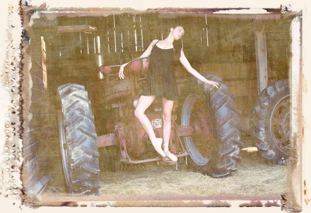 Barn Beauty.jpg