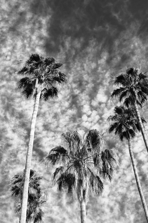 Palm Springs Sky.jpg