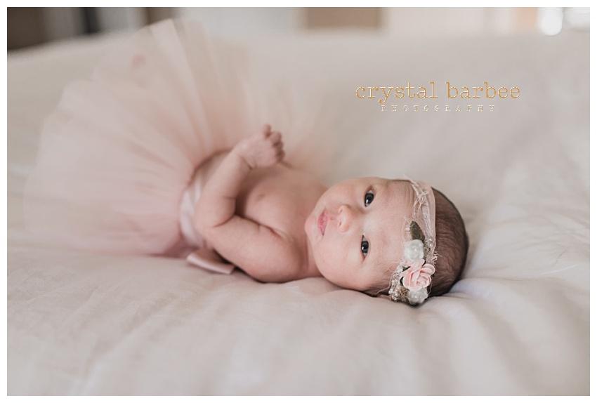 Crystal Barbee Photography (8).jpg
