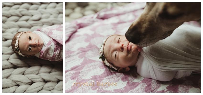 Crystal Barbee Maternity Photography_0640.jpg